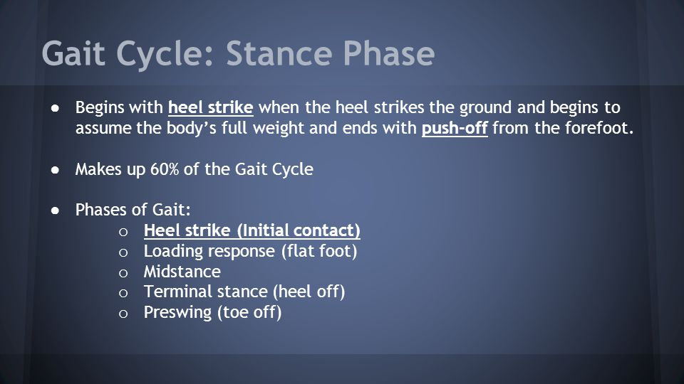 Gait Cycle: Stance Phase ● Begins with heel strike when the heel strikes the ground and begins to assume the body's full weight and ends with push-off