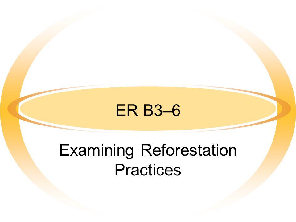 ER B3–6 Examining Reforestation Practices
