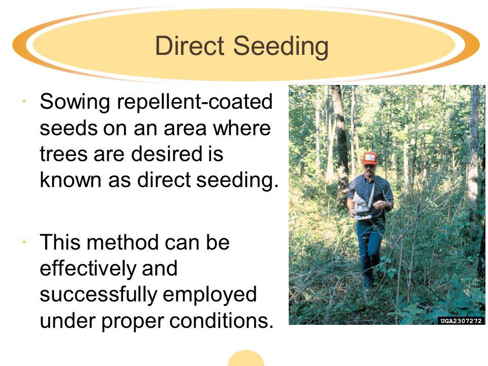 Identify Sources of Tree Seedlings ·II.