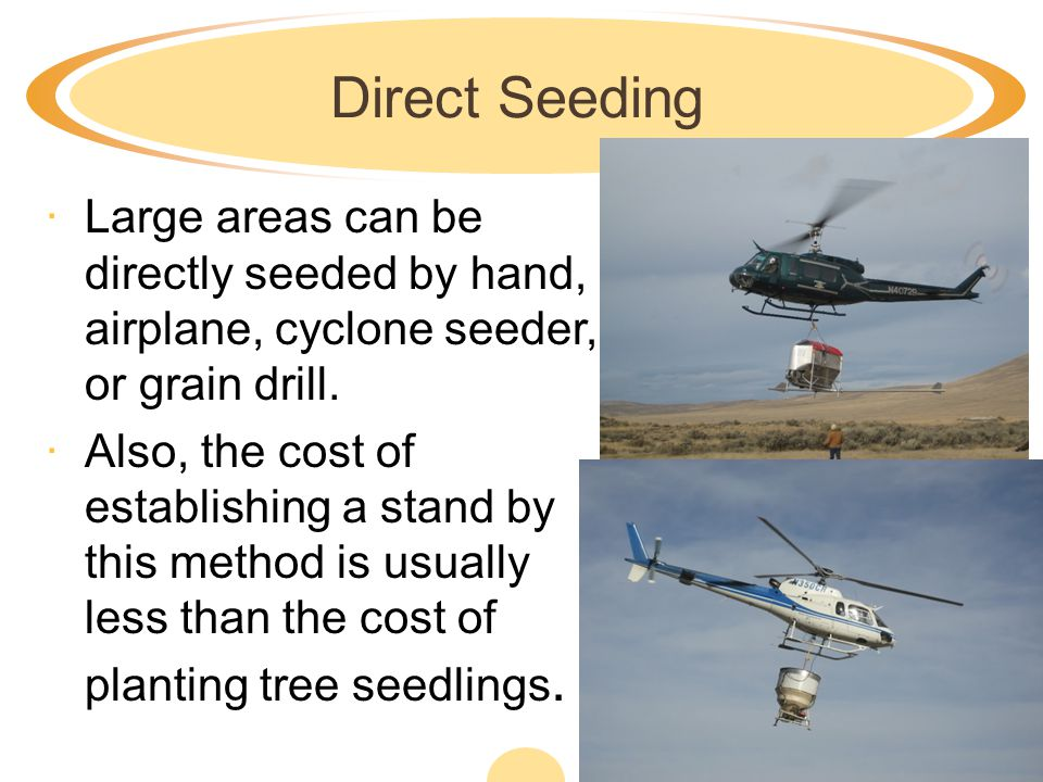 Direct Seeding ·Large areas can be directly seeded by hand, airplane, cyclone seeder, or grain drill.