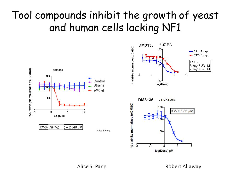 Tool compounds inhibit the growth of yeast and human cells lacking NF1 Robert Allaway DMS136 Alice S.