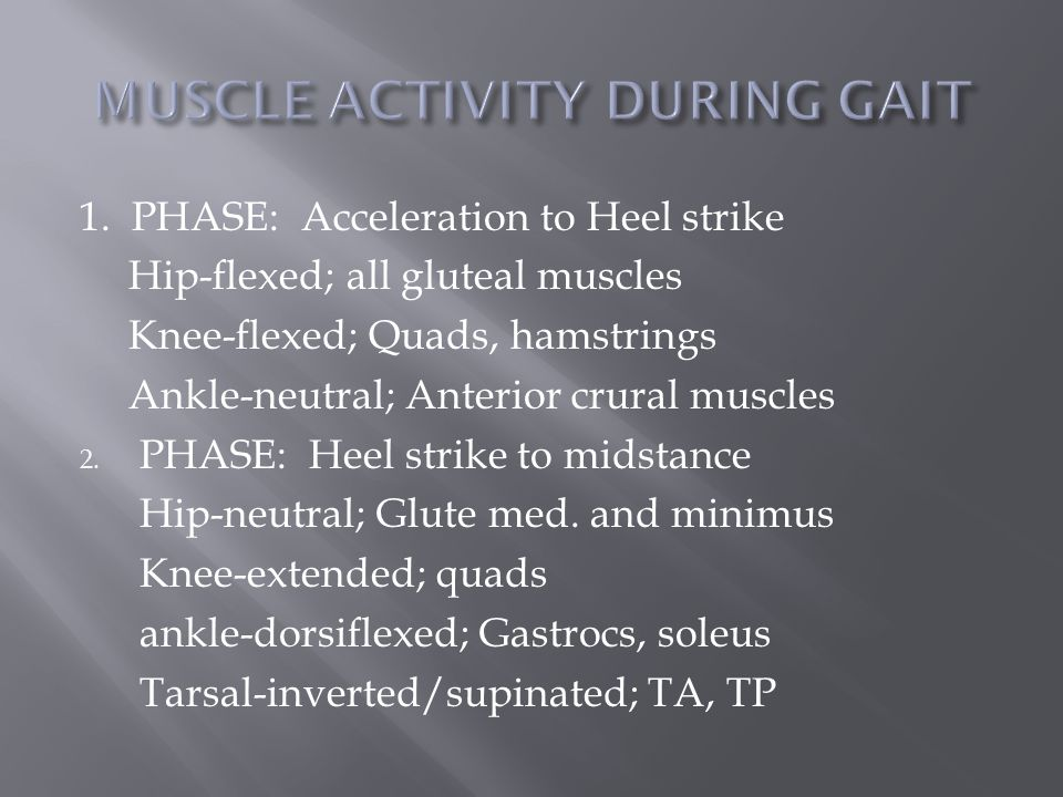 1. PHASE: Acceleration to Heel strike Hip-flexed; all gluteal muscles Knee-flexed; Quads, hamstrings Ankle-neutral; Anterior crural muscles 2. PHASE: