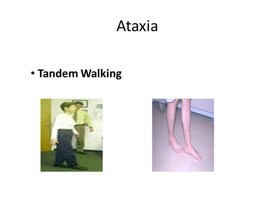 Ataxia Tandem Walking