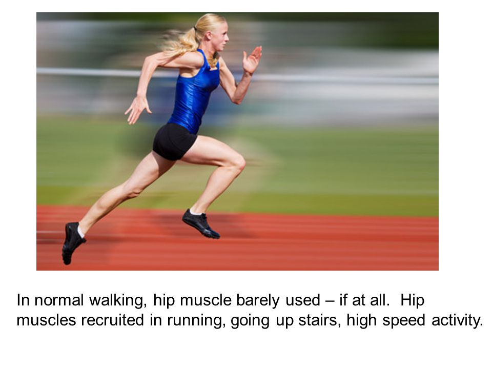 In normal walking, hip muscle barely used – if at all.