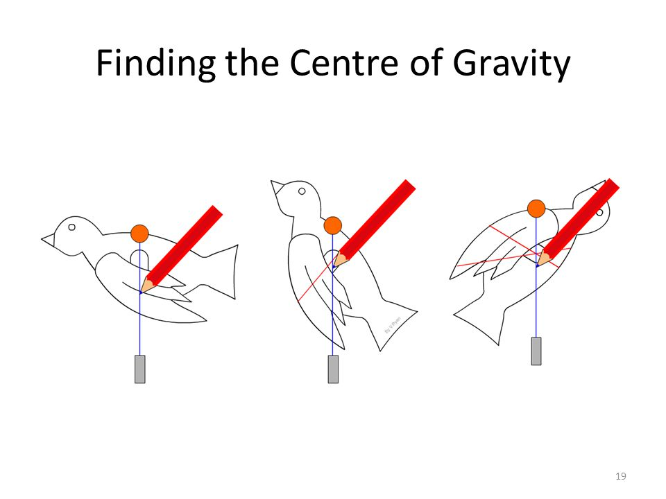 Finding the Centre of Gravity 19