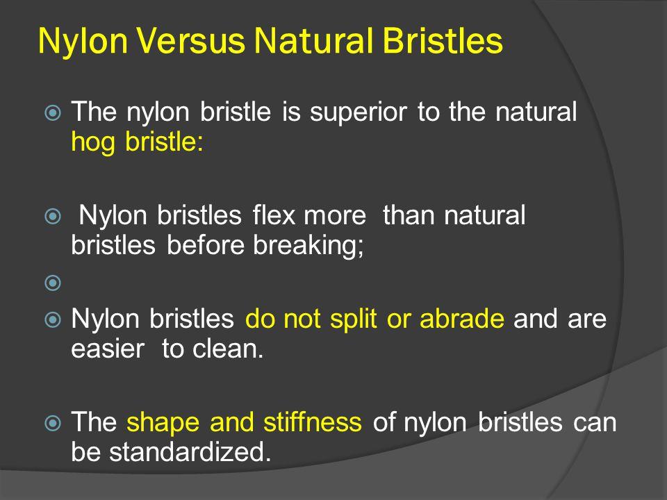 Nylon Versus Natural Bristles  The nylon bristle is superior to the natural hog bristle:  Nylon bristles flex more than natural bristles before brea