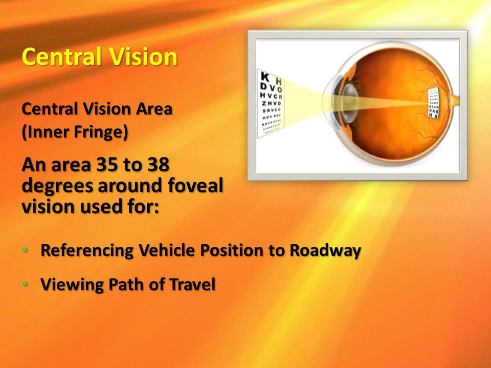 Referencing Vehicle Position to Roadway Referencing Vehicle Position to Roadway Viewing Path of Travel Viewing Path of Travel Central Vision Area (Inn