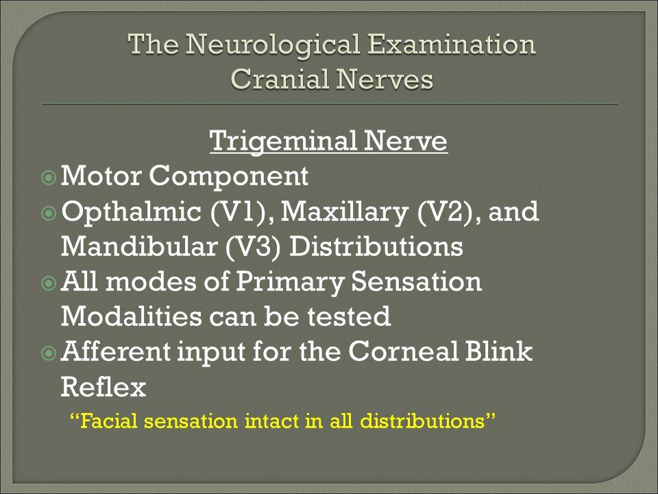 Trigeminal Nerve  Motor Component  Opthalmic (V1), Maxillary (V2), and Mandibular (V3) Distributions  All modes of Primary Sensation Modalities can