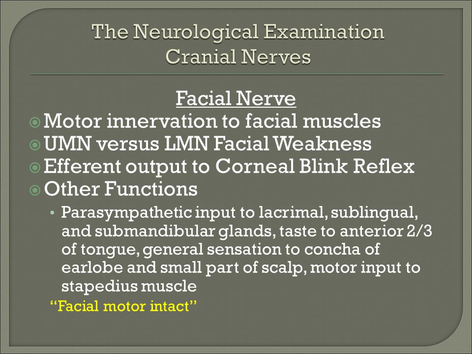 Facial Nerve  Motor innervation to facial muscles  UMN versus LMN Facial Weakness  Efferent output to Corneal Blink Reflex  Other Functions Parasy