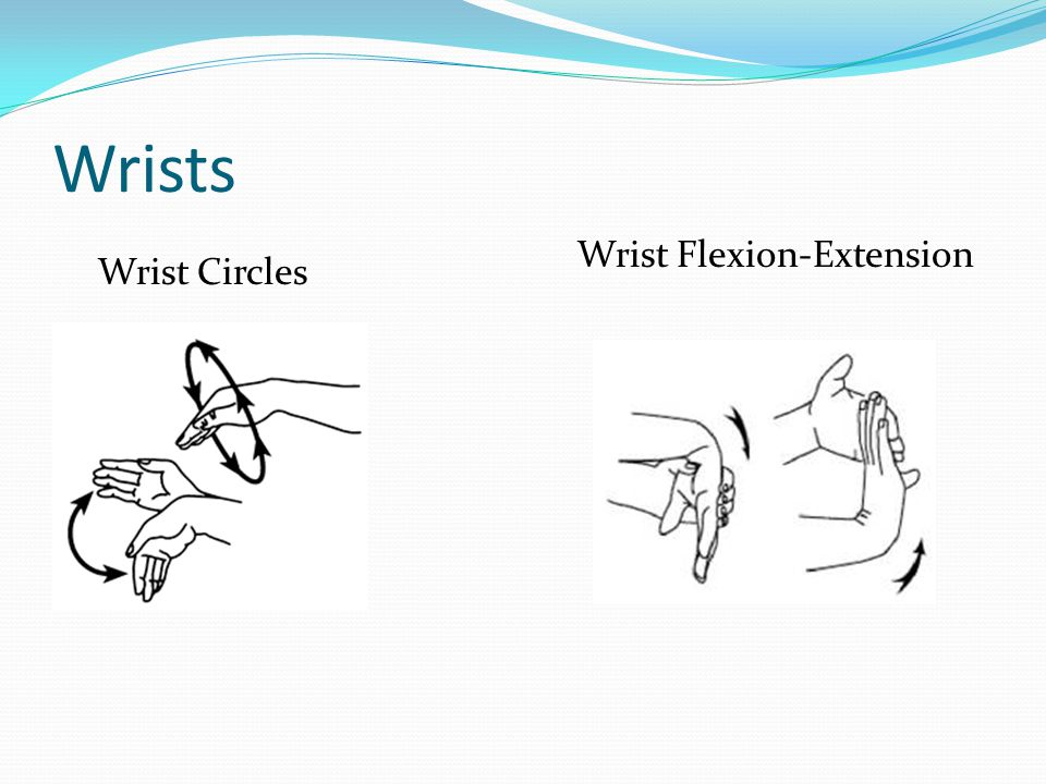 Wrists Wrist Circles Wrist Flexion-Extension