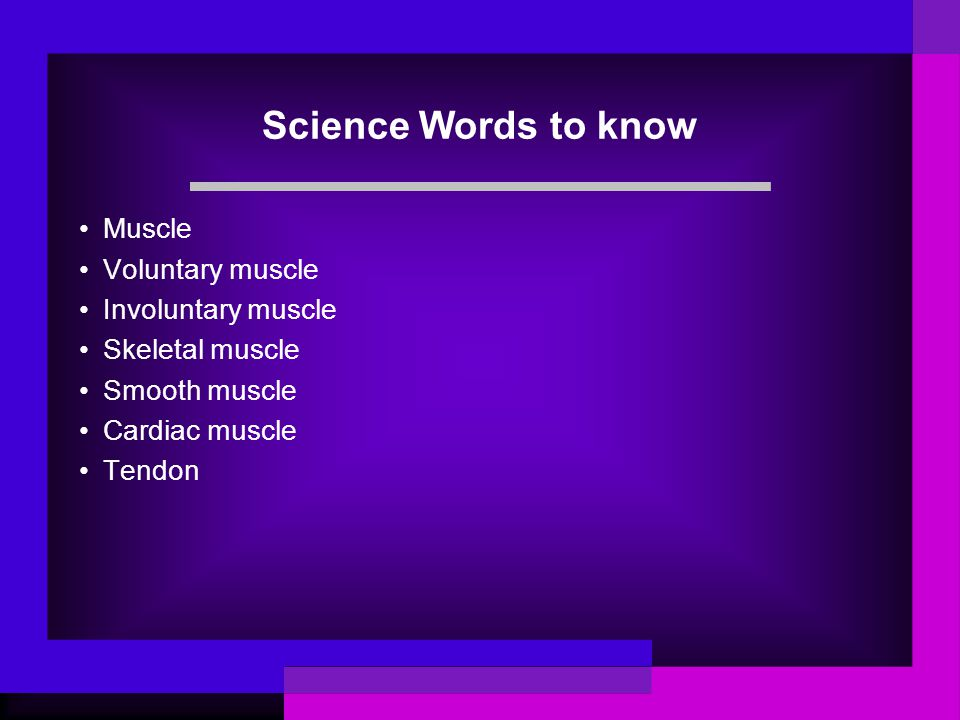 Types of Muscles - Smooth Muscles Smooth muscles - non-striated Involuntary Move the internal organs Contract and relax slowly Example- small intestine, stomach, digestive system, bladder