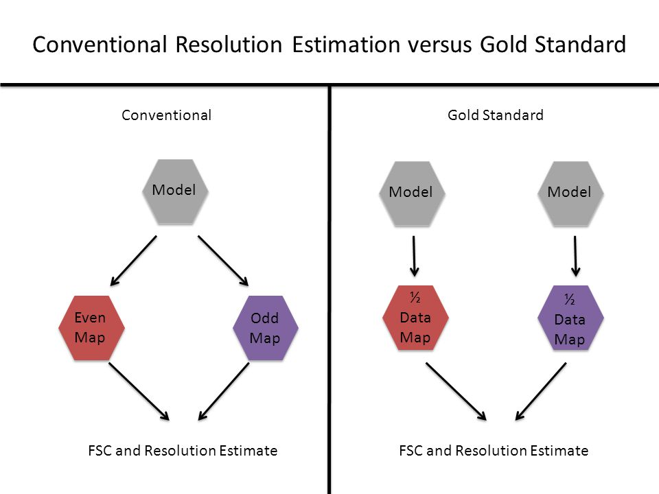 Conventional Resolution Estimation versus Gold Standard ConventionalGold Standard Model Even Map Odd Map FSC and Resolution Estimate Model ½ Data Map ½ Data Map FSC and Resolution Estimate