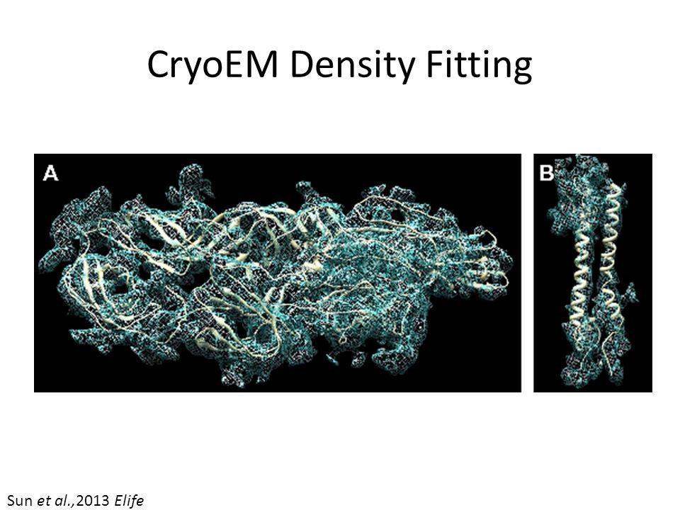 CryoEM Density Fitting Sun et al.,2013 Elife