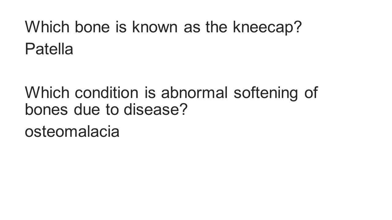 Which bone is known as the kneecap.