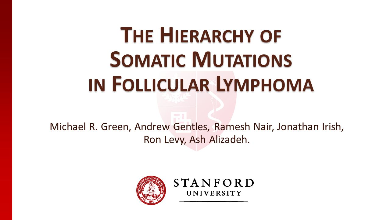 T HE H IERARCHY OF S OMATIC M UTATIONS IN F OLLICULAR L YMPHOMA Michael R. Green, Andrew Gentles, Ramesh Nair, Jonathan Irish, Ron Levy, Ash Alizadeh.