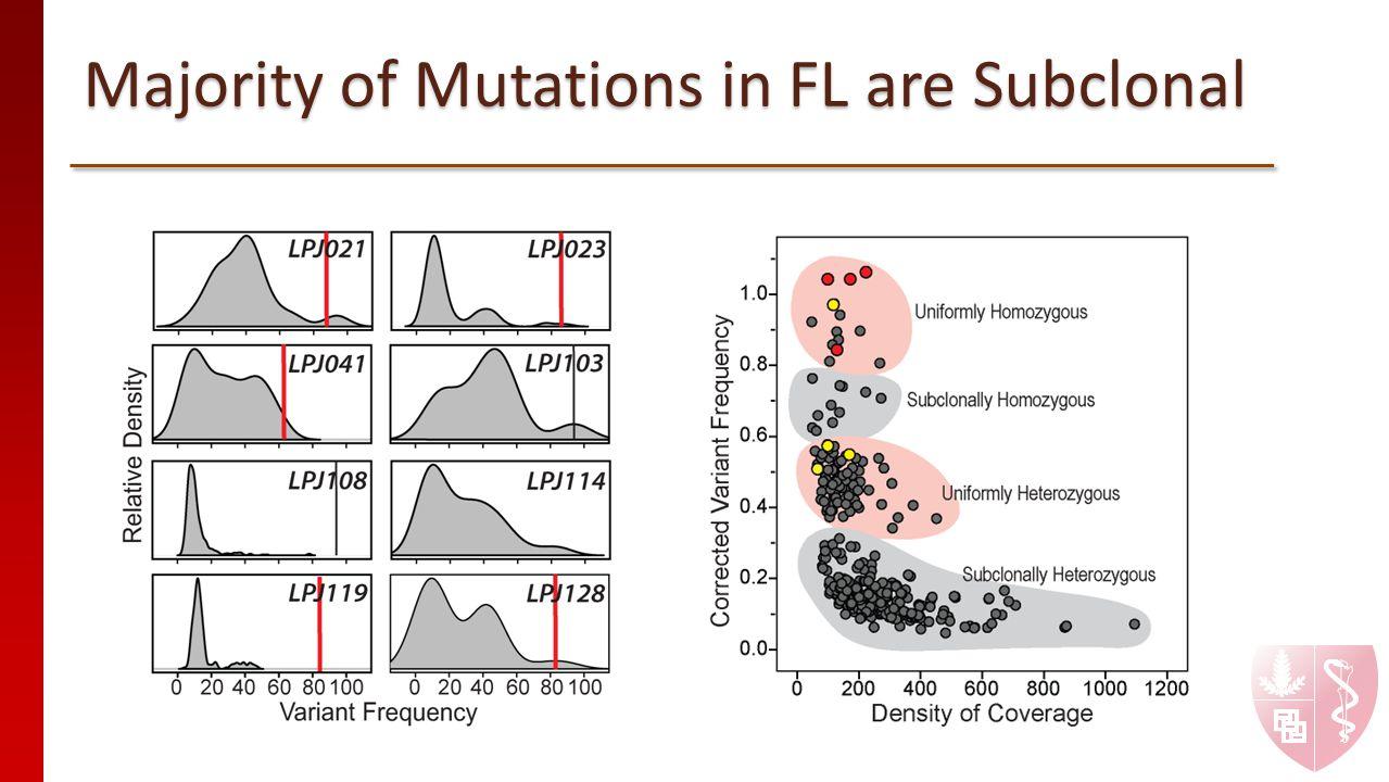 Majority of Mutations in FL are Subclonal