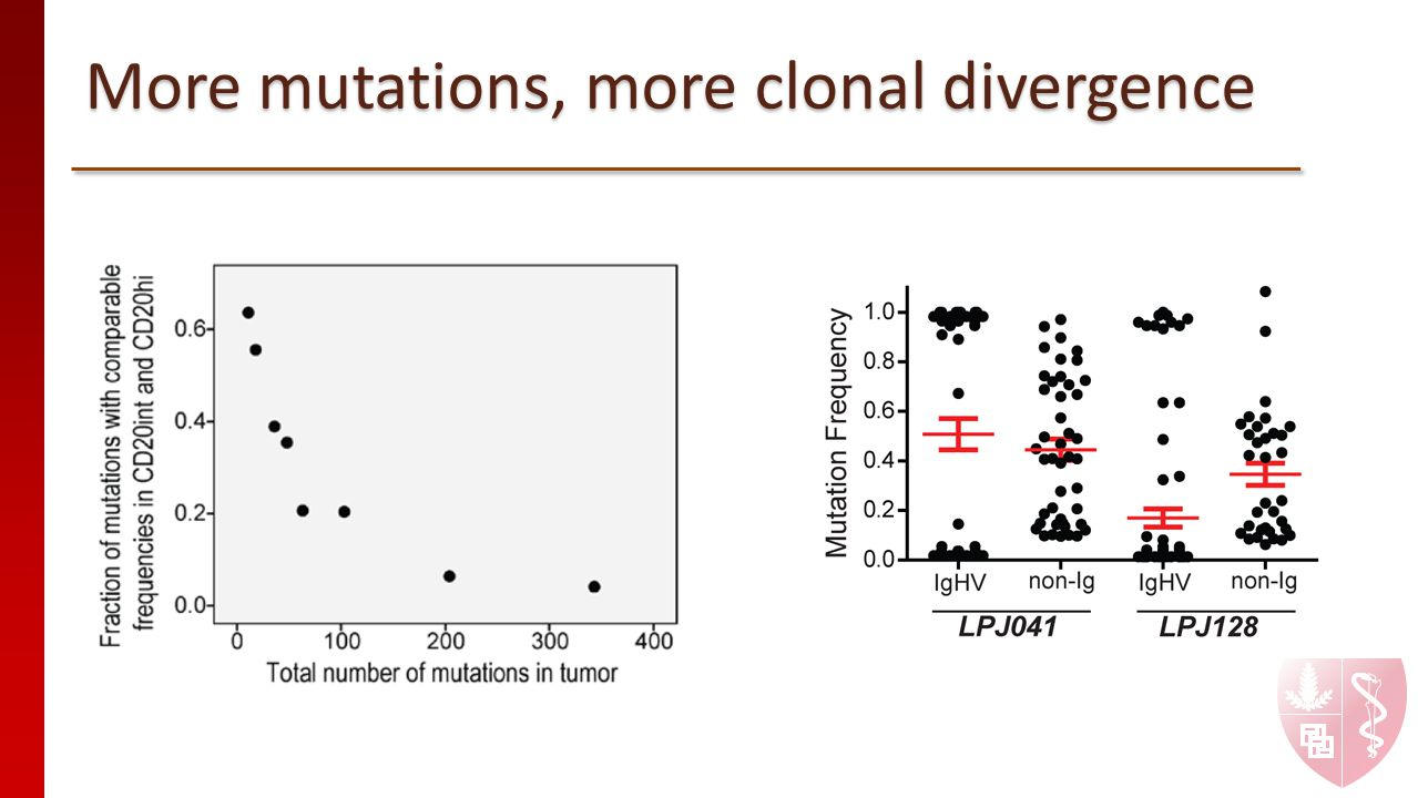 More mutations, more clonal divergence