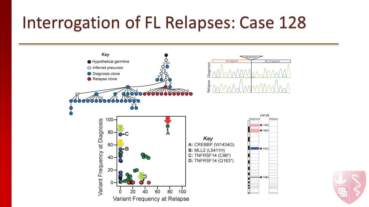 Interrogation of FL Relapses: Case 128