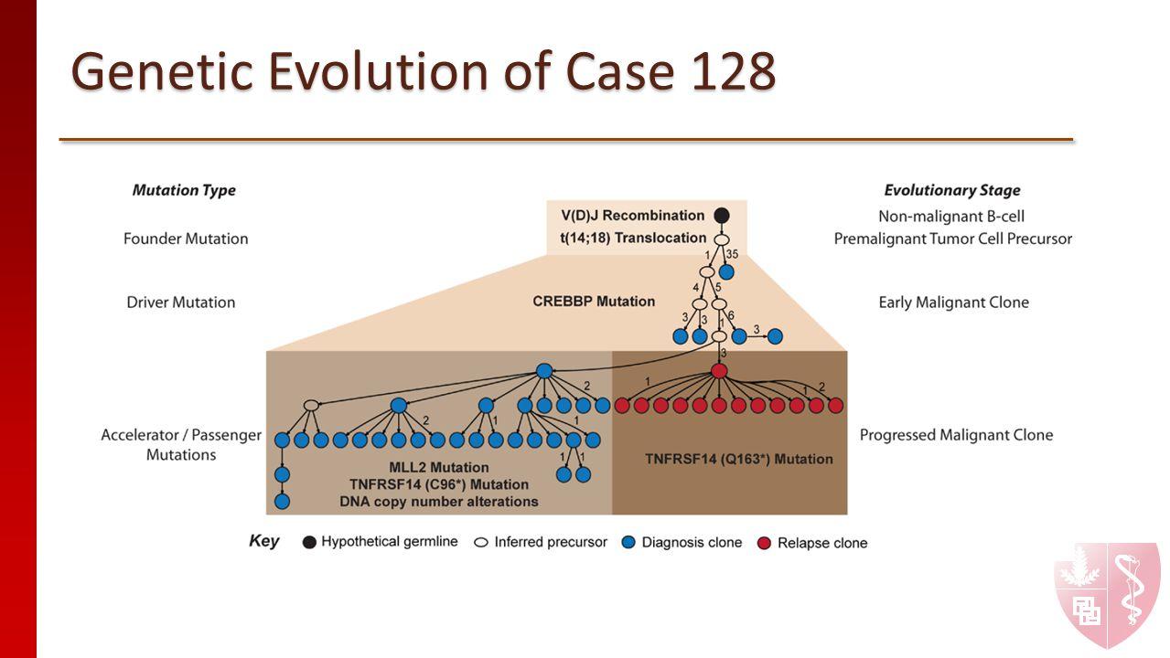 Genetic Evolution of Case 128