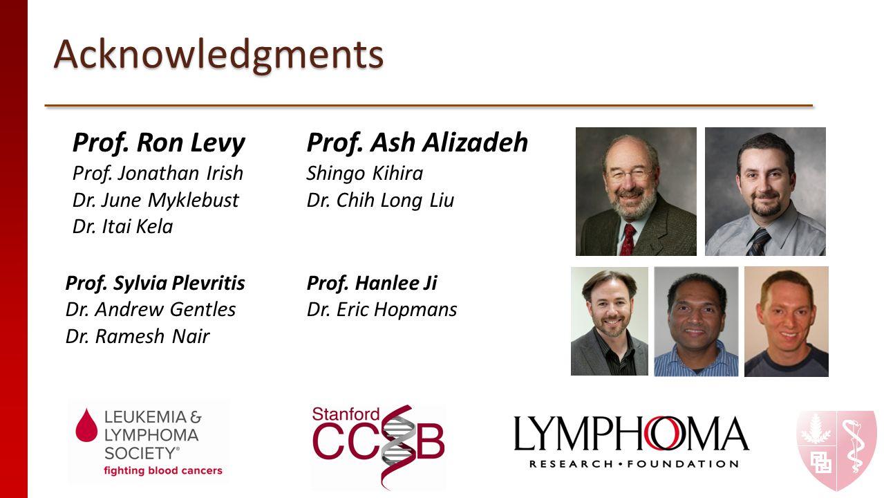 Acknowledgments Prof. Ron Levy Prof. Jonathan Irish Dr. June Myklebust Dr. Itai Kela Prof. Ash Alizadeh Shingo Kihira Dr. Chih Long Liu Prof. Sylvia P