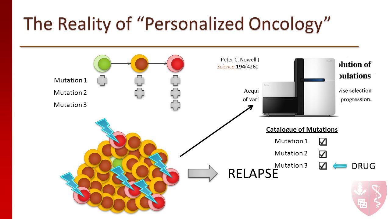 "The Reality of ""Personalized Oncology"" Mutation 1 Mutation 2 Mutation 3 Peter C. Nowell (1976) Science.Science.194(4260):23-8. DRUG Mutation 1 Mutatio"