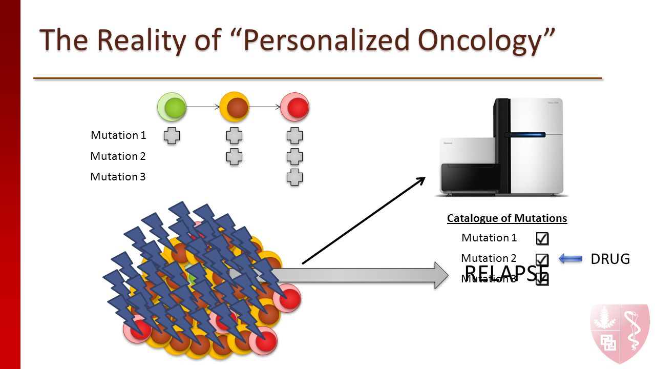"""The Reality of """"Personalized Oncology"""" Mutation 1 Mutation 2 Mutation 3 DRUG Mutation 1 Mutation 2 Mutation 3 Catalogue of Mutations RELAPSE"""
