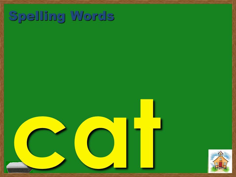 Home Spelling Words cat