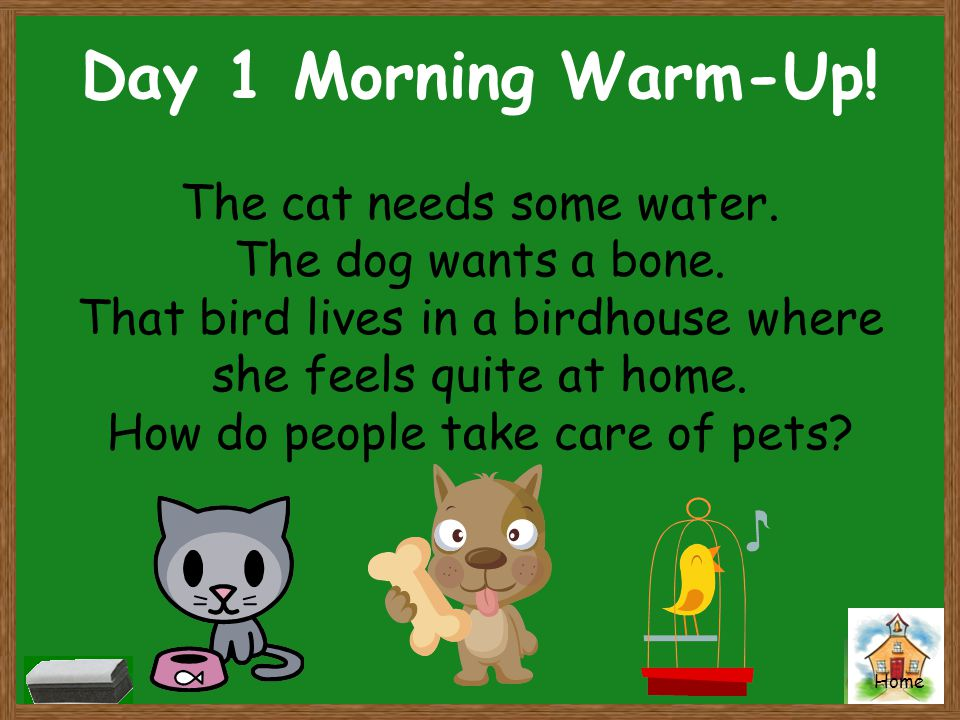 Home Day 1 Morning Warm-Up! The cat needs some water. The dog wants a bone. That bird lives in a birdhouse where she feels quite at home. How do peopl