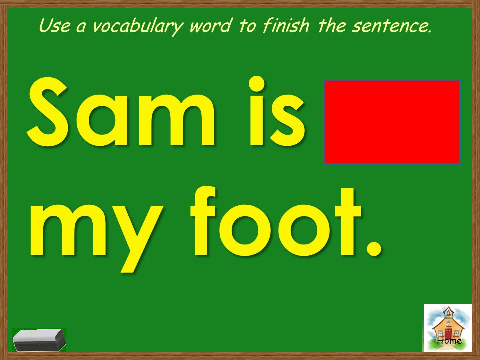 Home Use a vocabulary word to finish the sentence. Sam is on my foot.