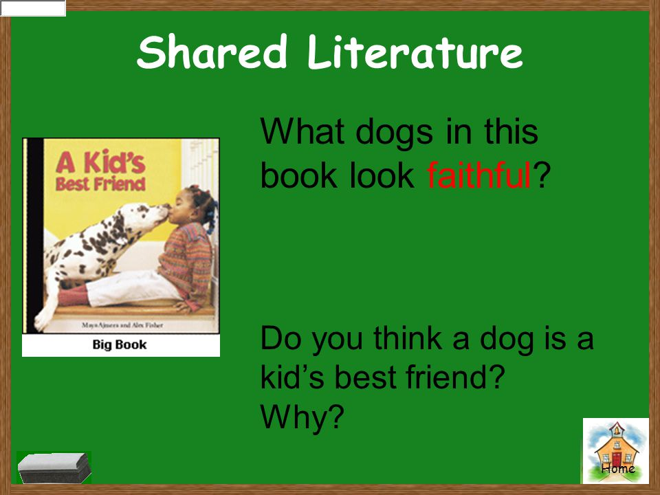 Shared Literature What dogs in this book look faithful? Do you think a dog is a kid's best friend? Why?