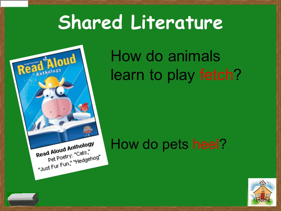 Shared Literature How do animals learn to play fetch? How do pets heel?