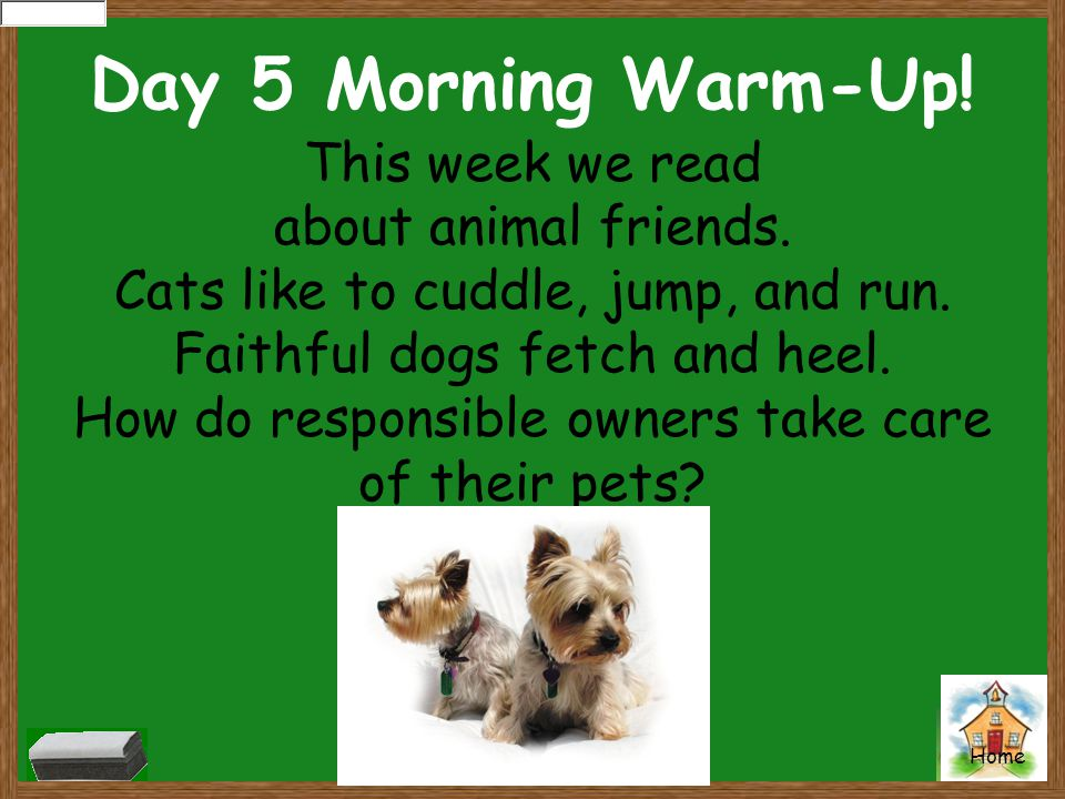 Home Day 5 Morning Warm-Up! This week we read about animal friends. Cats like to cuddle, jump, and run. Faithful dogs fetch and heel. How do responsib
