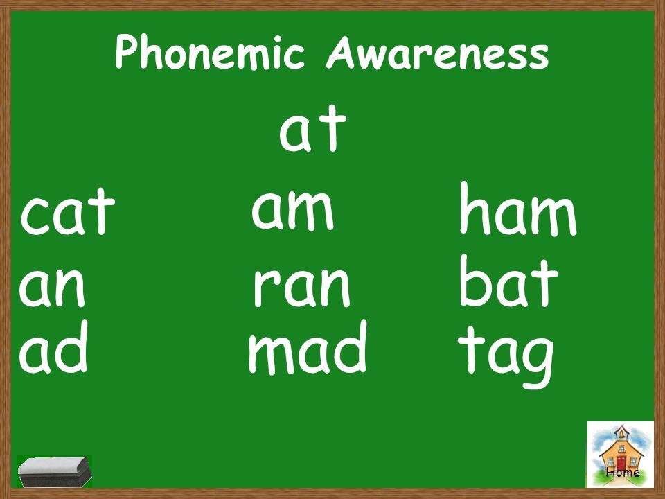 Home Phonemic Awareness at cat an ad am ran mad ham bat tag