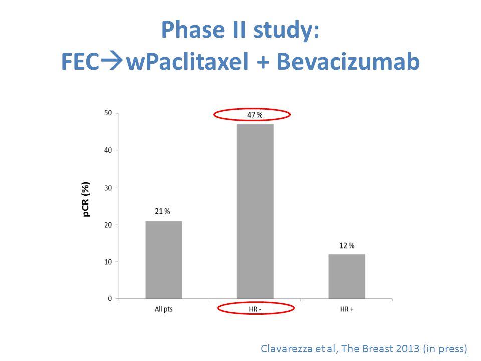 Phase II study: FEC  wPaclitaxel + Bevacizumab Clavarezza et al, The Breast 2013 (in press)