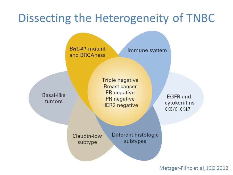 Dissecting the Heterogeneity of TNBC Metzger-Filho et al, JCO 2012 CK5/6, CK17
