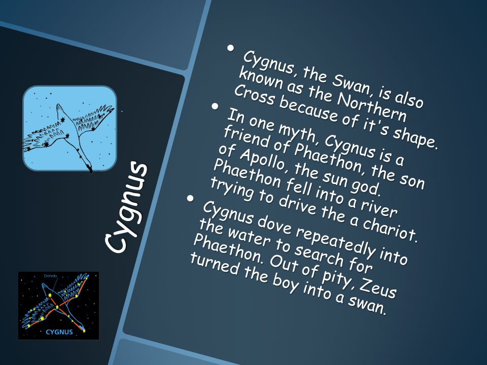 Cygnus Cygnus, the Swan, is also known as the Northern Cross because of it s shape.