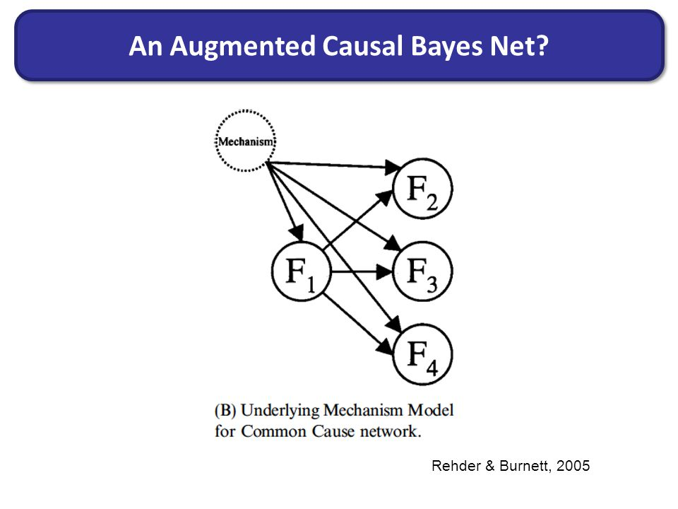 An Augmented Causal Bayes Net Rehder & Burnett, 2005