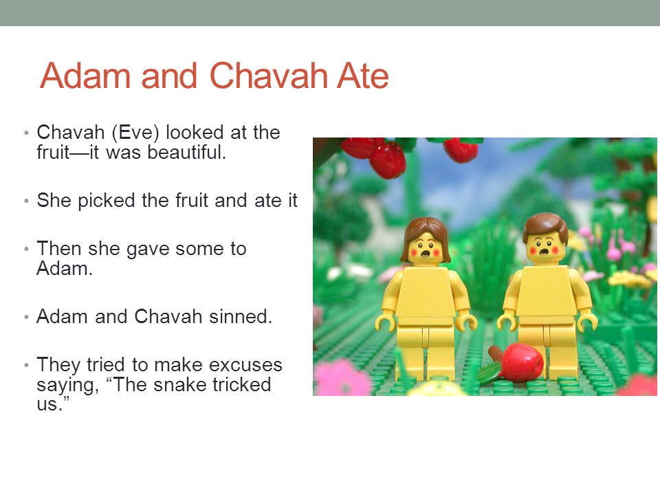 Adam and Chavah Ate Chavah (Eve) looked at the fruit—it was beautiful.