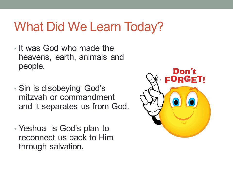 What Did We Learn Today. It was God who made the heavens, earth, animals and people.