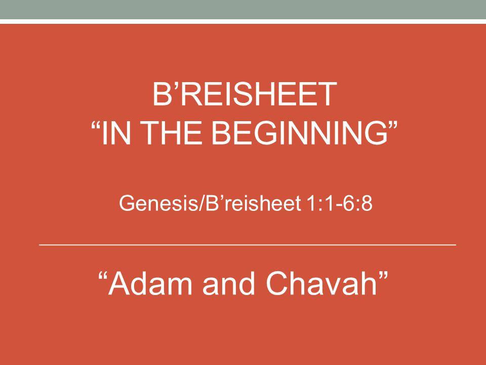 B'REISHEET IN THE BEGINNING Genesis/B'reisheet 1:1-6:8 Adam and Chavah