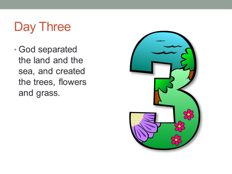 Day Three God separated the land and the sea, and created the trees, flowers and grass.
