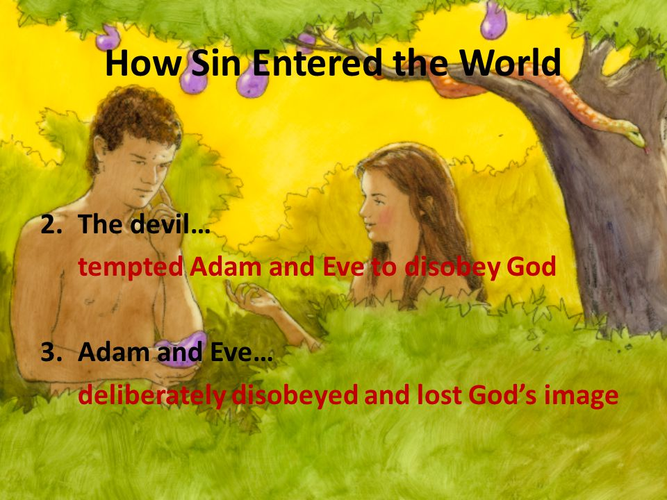 How Sin Entered the World 2.The devil… tempted Adam and Eve to disobey God 3.Adam and Eve… deliberately disobeyed and lost God's image