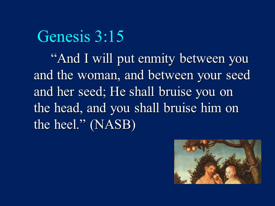 "Genesis 3:15 ""And I will put enmity between you and the woman, and between your seed and her seed; He shall bruise you on the head, and you shall brui"