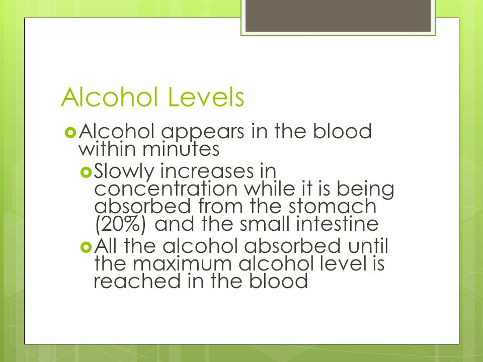 Alcohol Levels  Alcohol appears in the blood within minutes  Slowly increases in concentration while it is being absorbed from the stomach (20%) and the small intestine  All the alcohol absorbed until the maximum alcohol level is reached in the blood
