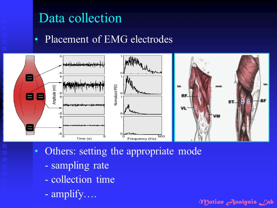 Motion Analysis Lab Data collection Placement of EMG electrodes Others: setting the appropriate mode - sampling rate - collection time - amplify….