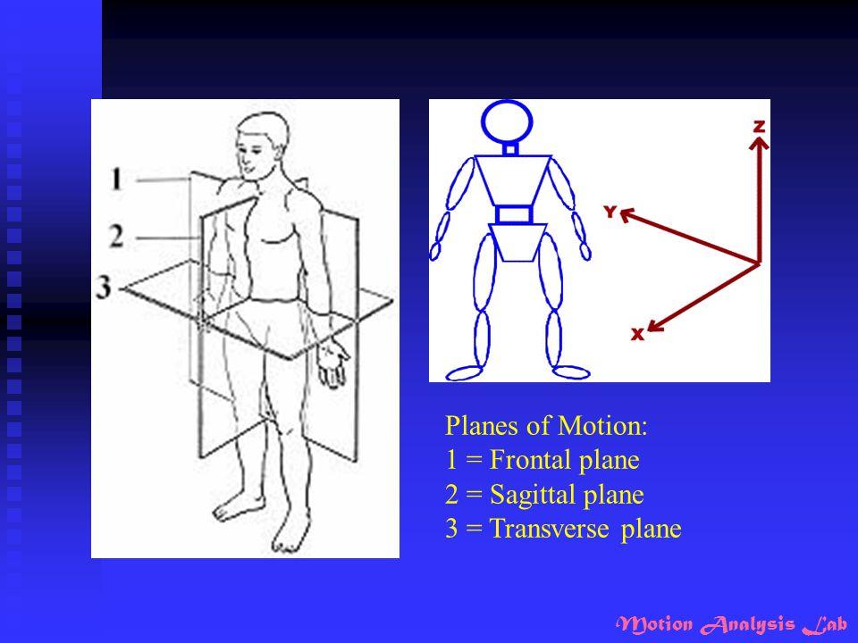 Motion Analysis Lab Planes of Motion: 1 = Frontal plane 2 = Sagittal plane 3 = Transverse plane