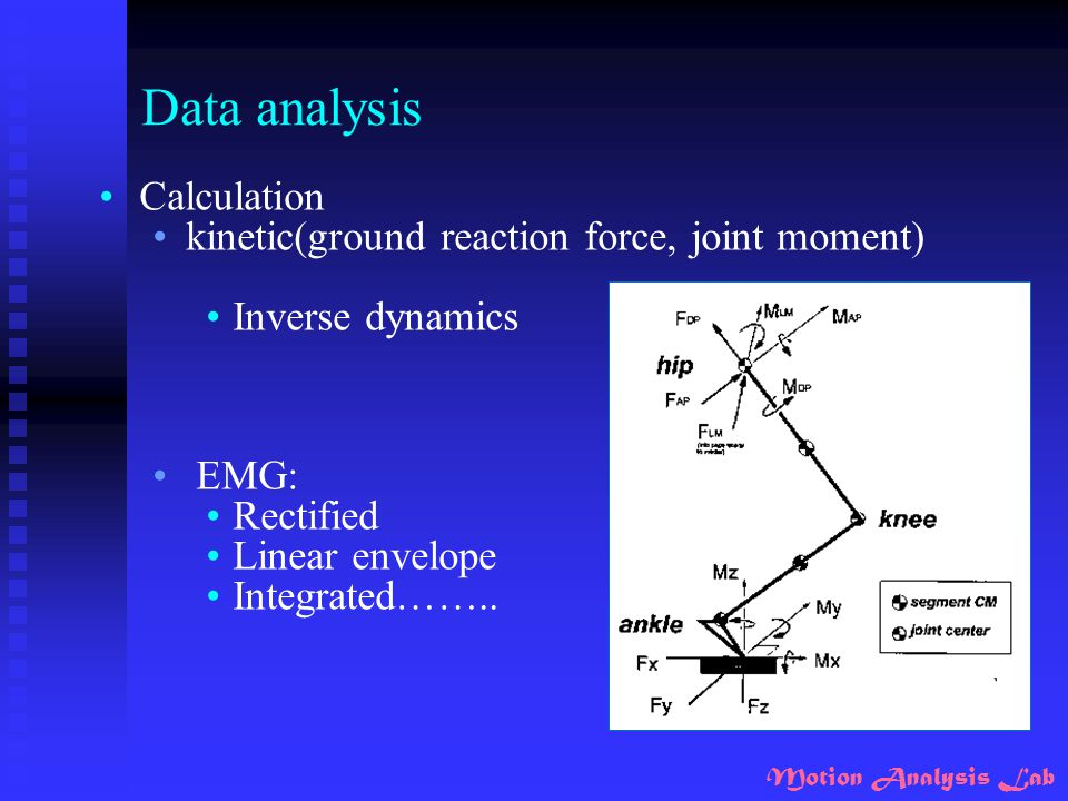 Motion Analysis Lab Data analysis Calculation kinetic(ground reaction force, joint moment) Inverse dynamics EMG: Rectified Linear envelope Integrated…