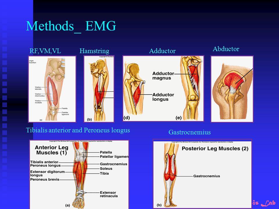 Motion Analysis Lab Methods_ EMG Adductor Abductor HamstringRF,VM,VL Tibialis anterior and Peroneus longus Gastrocnemius