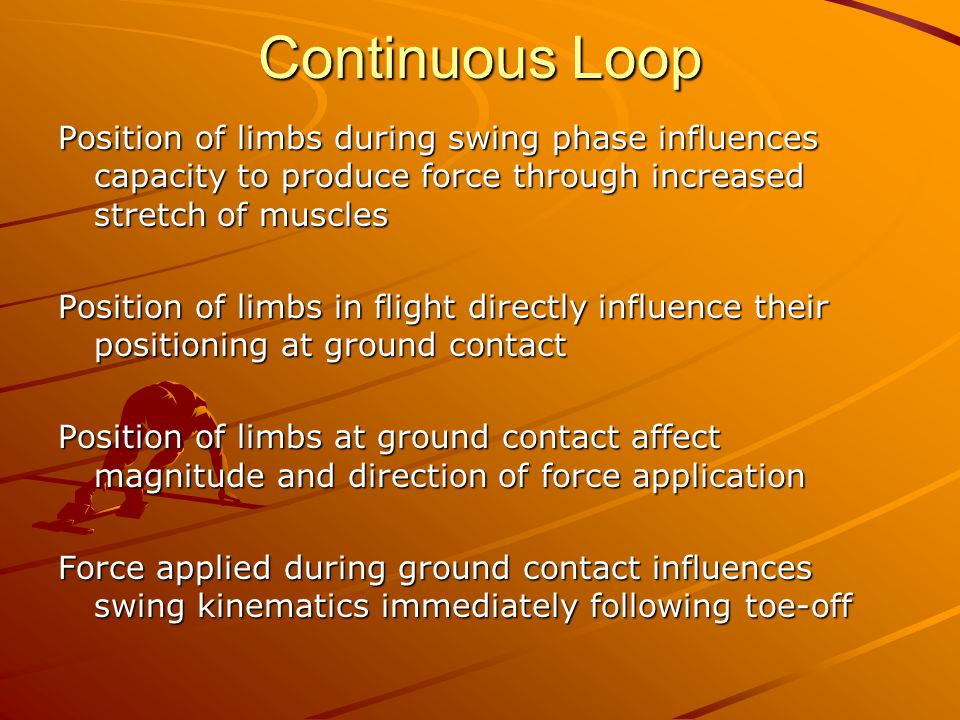 Continuous Loop Position of limbs during swing phase influences capacity to produce force through increased stretch of muscles Position of limbs in flight directly influence their positioning at ground contact Position of limbs at ground contact affect magnitude and direction of force application Force applied during ground contact influences swing kinematics immediately following toe-off
