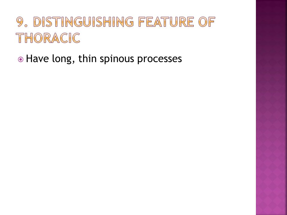  Have long, thin spinous processes